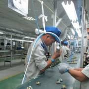 Cần những cải cách thực chất để kinh tế tư nhân phát triển