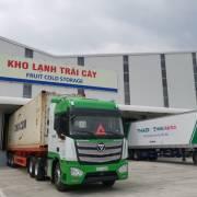 HAGL Agrico chuyển nhượng công ty cao su cho Thadi