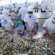 EVFTA: Cơ hội nào cho doanh nghiệp Việt?