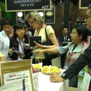 Hàng Việt sang Thái: Chất lượng, bản địa và thương hiệu