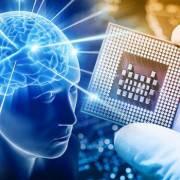Chip điện tử tái tạo cách thức bộ não lưu trữ thông tin
