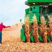 Nông dân Mỹ kiếm tiền từ mạng xã hội nhiều hơn làm nông