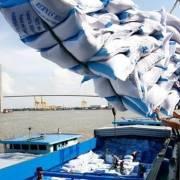 Xuất khẩu nhiều mặt hàng nông sản giảm mạnh