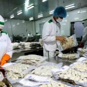 Xuất khẩu nông-lâm-thủy sản đạt 30,02 tỷ USD trong 9 tháng