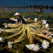 [Photo] Ký ức mùa nước nổi