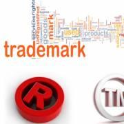 Bảo vệ nhãn hiệu thương mại cho các DN Việt Nam xuất khẩu hàng hóa vào Mỹ