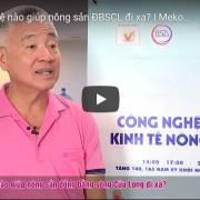 [Video] Mekong Connect 2019: công nghệ nào giúp nông sản ĐBSCL đi xa?
