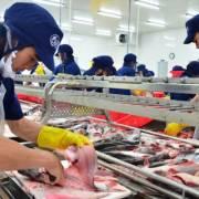DN xuất khẩu cá tra sang Đức lưu ý kiểm soát chặt dư lượng Chlorate
