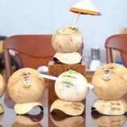 [Video] Khởi nghiệp với trái Dừa Cười