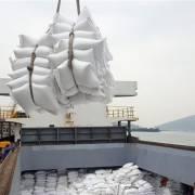 Làm rõ nguyên nhân giá gạo Việt Nam thấp nhất trong 12 năm qua
