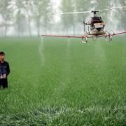 Châu Á đối diện với khủng hoảng lương thực