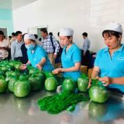 Đưa hàng Việt vào thị trường Thái Lan