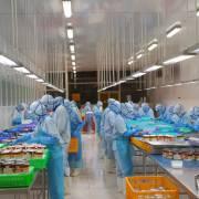 Doanh nghiệp thực phẩm trở lại sân nhà