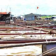 Sông Đồng Nai ô nhiễm vượt quy chuẩn, TP.HCM trước nguy cơ mất an toàn cấp nước