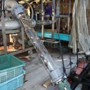 Nghề nuôi cá thông minh ở Nhật Bản