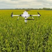 Ấn Độ cải thiện năng suất nông nghiệp với agritech