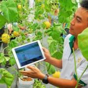 Xây dựng lớp nông dân đổi mới, có kiến thức khoa học