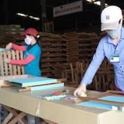 Mỹ chiếm 50% tổng kim ngạch xuất khẩu của toàn ngành gỗ