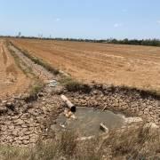 Một ĐBSCL ô nhiễm giữa mùa hạn mặn