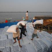Xuất khẩu gạo tăng vọt trong đại dịch Covid-19