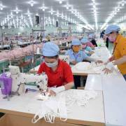 DN cần thận trọng với việc sản xuất khẩu trang xuất khẩu sang EU