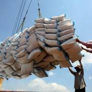 Nối lại xuất khẩu cho 17.000 tấn gạo mắc kẹt tại cảng, cửa khẩu
