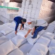 Việt Nam tham gia đấu thầu cung cấp 300.000 tấn gạo cho Philippines