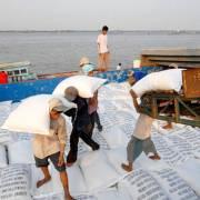 VCCI kiến nghị bỏ điều kiện xuất khẩu gạo và một loạt mặt hàng khác