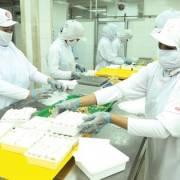 Mạnh vốn, doanh nghiệp ngoại tràn vào Việt Nam