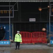 WHO xác nhận 'vai trò' của khu chợ tại Vũ Hán với đại dịch Covid-19