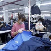 Hiệp định EVFTA là cơ hội tốt cho nhà đầu tư Ấn Độ tại Việt Nam