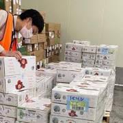 Vải thiều Việt xuất khẩu sang Nhật Bản giá bán tới 270.000/kg