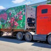 Cước vận tải quá cao làm nông sản khó quay về thị trường nội