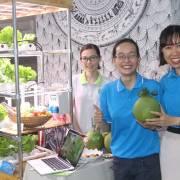 Cung cấp rau sạch và tủ trồng rau