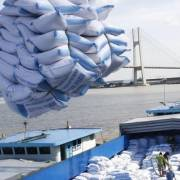 EU công bố hạn ngạch nhập khẩu nông sản và gạo Việt Nam theo EVFTA