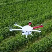 Chăm sóc cánh đồng lớn với Drone AI