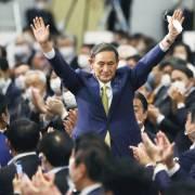 Ông Suga nắm chắc ghế thủ tướng Nhật Bản