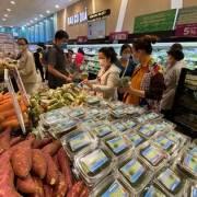 FTA hút vốn ngoại vào Việt Nam