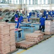 Các nước gia tăng phòng vệ thương mại với Việt Nam