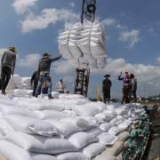 Giá gạo Việt Nam và Thái Lan giảm, gạo Ấn Độ tăng mạnh