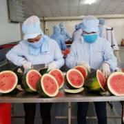 RCEP: Cơ hội mới cho hàng dệt may, nông sản