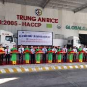 Xuất khẩu lô gạo đầu tiên năm 2021 sang Singapore và Malaysia