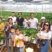 Du lịch canh nông Đà Lạt trên đường chuyên nghiệp hóa