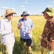 Xem nhà nông Úc làm hữu cơ, nghĩ về Việt Nam