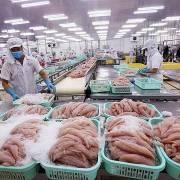 UAE tiếp tục là thị trường tiềm năng với doanh nghiệp Việt