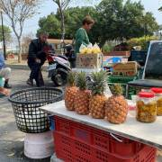 Người Đài Loan cũng phải 'giải cứu dứa' sau lệnh cấm của Trung Quốc