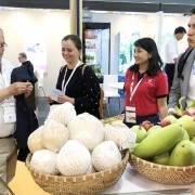 Mỹ vượt TQ trở thành thị trường nhập khẩu nông sản lớn nhất của VN