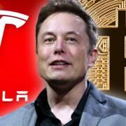 Tỷ phú Elon Musk ngầm khẳng định Tesla đã bán hết Bitcoin