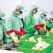 Thị trường Mỹ ngày càng hấp dẫn doanh nghiệp Việt