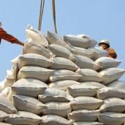 Gạo Ấn Độ nhập về Việt Nam tăng 3.200 lần so với cùng kỳ năm 2020